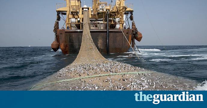 Apa saja yang termasuk jenis Penangkapan Ikan Destruktif
