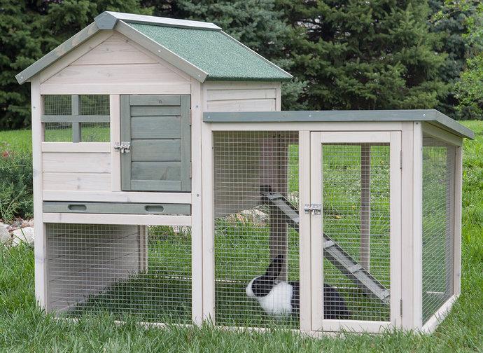 Kandnag kelinci