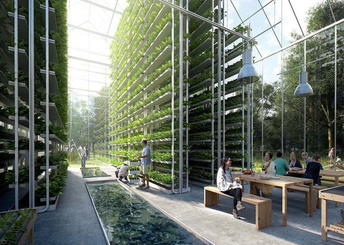 Vertical Garden Aeroponik 1