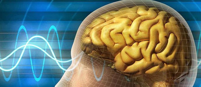 Pendekatan Neurobiologis