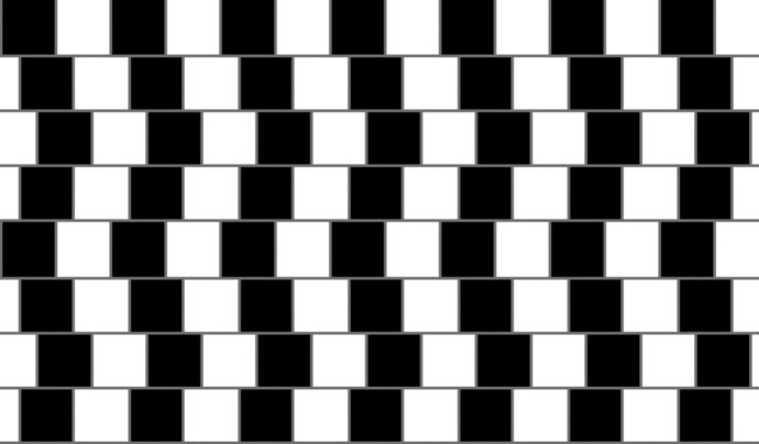 brain-optical-illusion