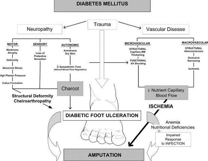 Mekanisme kaki diabetik