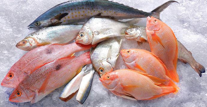 pengawetan ikan