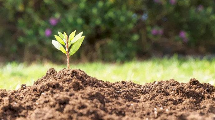 katena atau rangkaian tanah