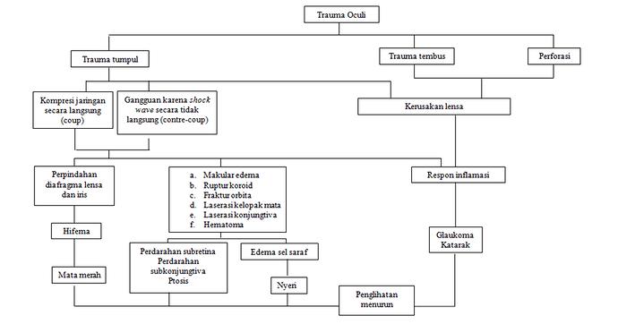 Patofisiologi trauma okuli