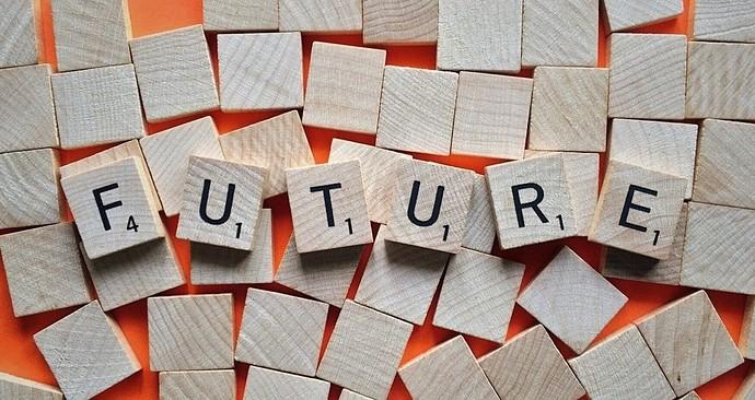 future-plan-essay