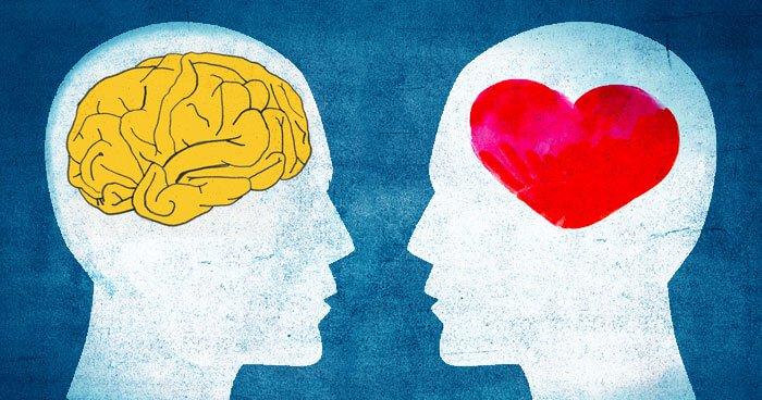 Apa yang dimaksud dengan kecerdasan emosional? - Psikologi - Dictio  Community