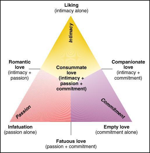 Intimacy triangle