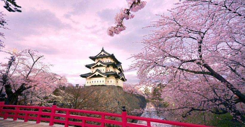 travelling Jepang
