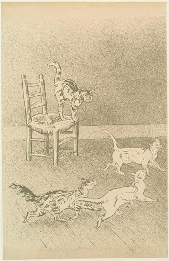 Cats race, Course de Chats, 1898