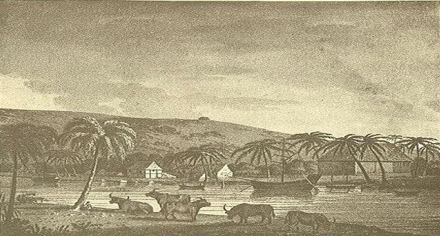 Kerajaan Padang Bedagai