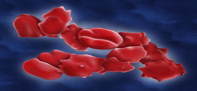 Merkuri dalam darah