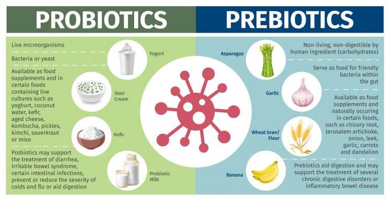 Apa perbedaan antara Probiotik dan Prebiotik? - Ilmu Gizi - Dictio Community