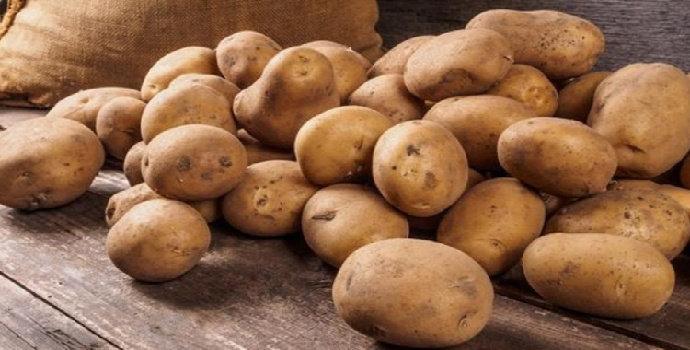 Mengapa kita tidak boleh menyimpan kentang di kulkas?