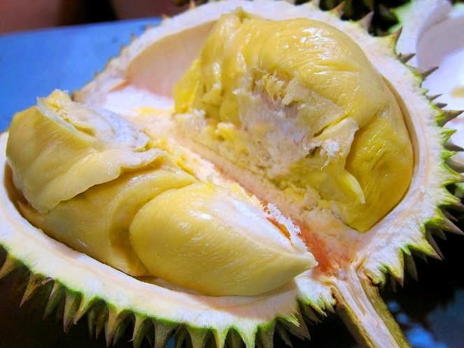 Durian-Montong-image-source