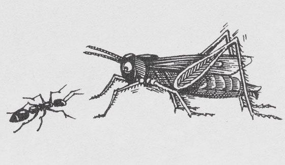 john_vernon_lord_ant_grasshopper