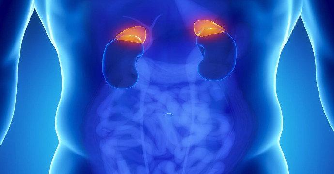 adrenal tumours