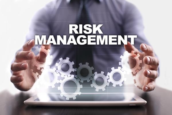 risk-management-lynx