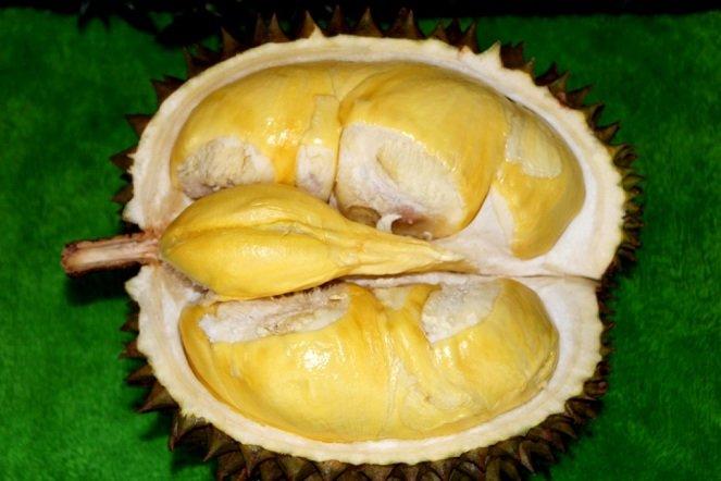 Durian-Matahari-image-source