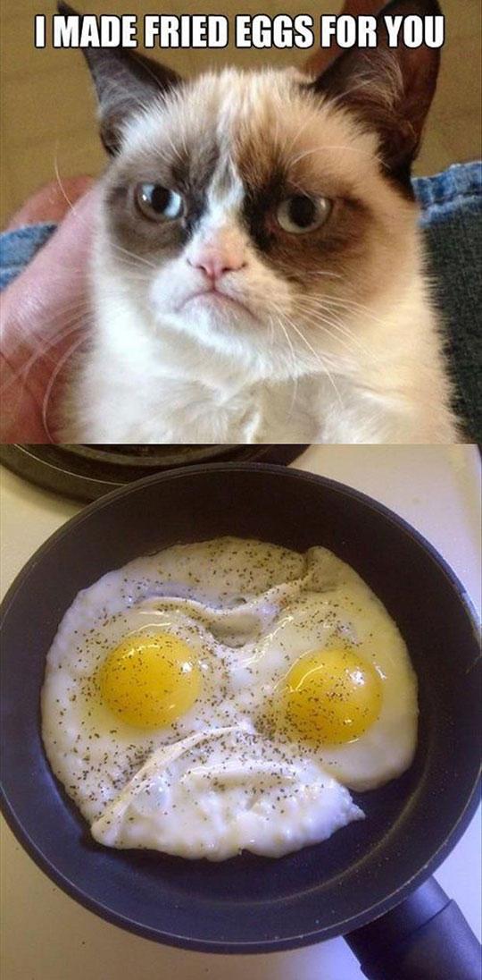 734742-10-meme-grumpy-cat