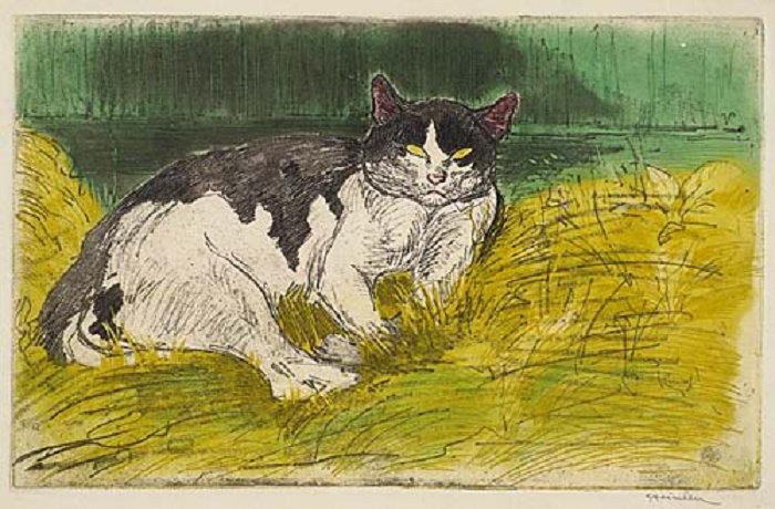 Old Cat, Le Vieux Chat, 1902