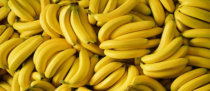 DNA pisang