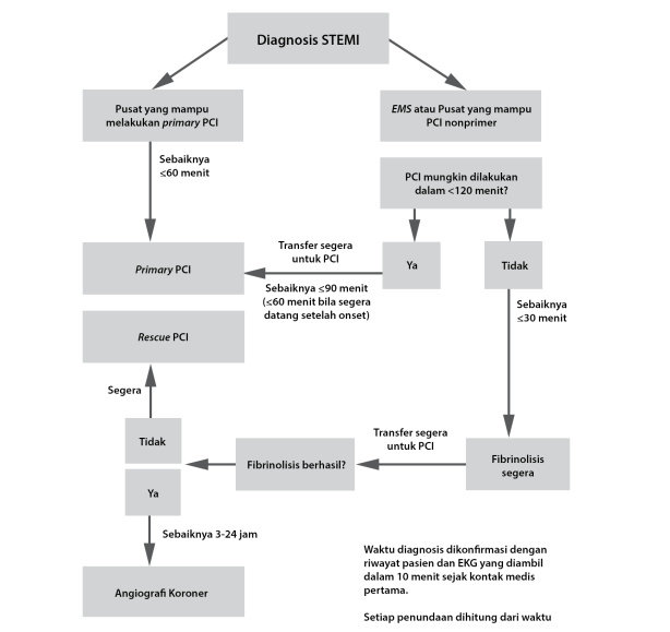 Langkah-langkah reperfusi