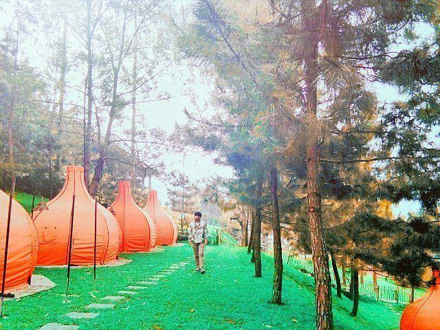 kesiniaja-The-Lodge-Maribaya-Lembang-5