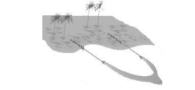 Pukat tarik pantai