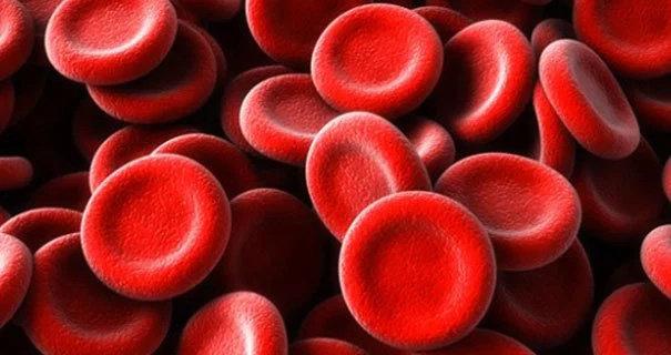 Sel darah merah dalam keadaan normal