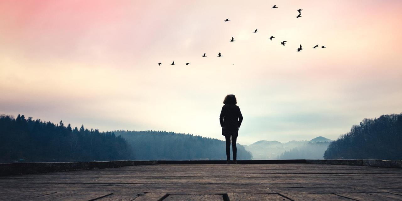 800+ Gambar Motivasi Tentang Kehidupan HD Terbaru