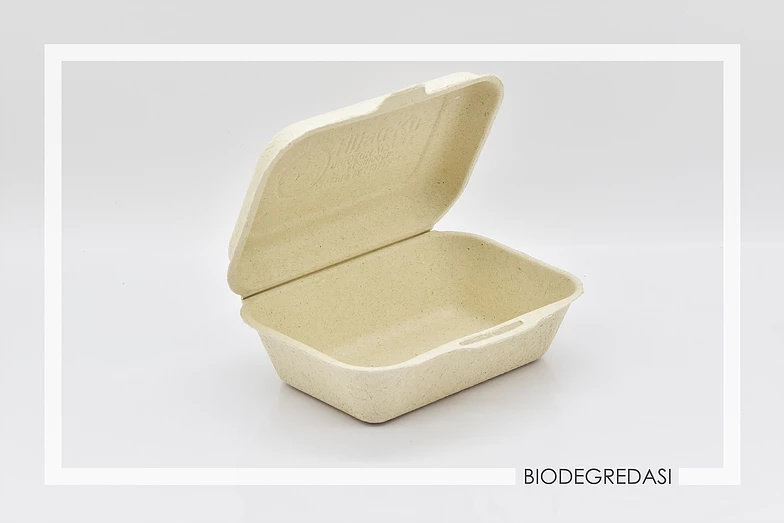 biodegradasi