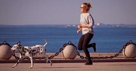 file_20719_column_how-much-exercise-does-a-dalmatian-need