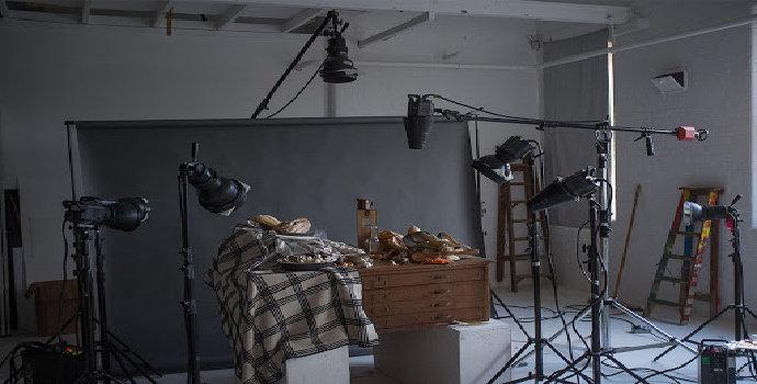 Apa jenis kamera pada pemotretan still life ?