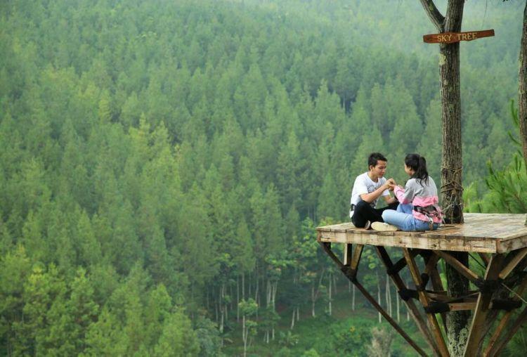 rumah-pohon-the-lodge-maribaya-kesiniaja