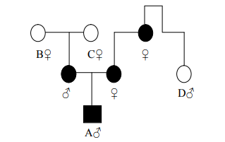 Ahli waris golongan III mewaris bersama-sama dengan golongan IV dibagi dua sama besar
