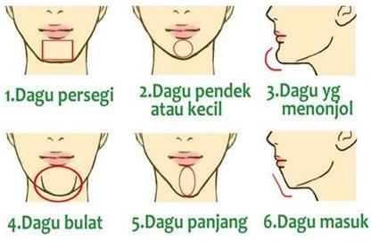 Bentuk Dagu