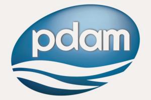 PDAM1-300x200