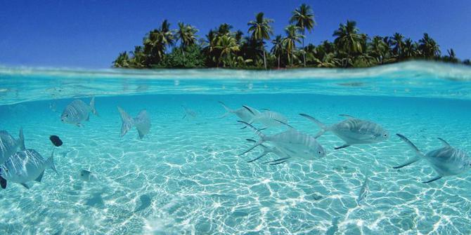 Ekosistem Laut dan Pantai