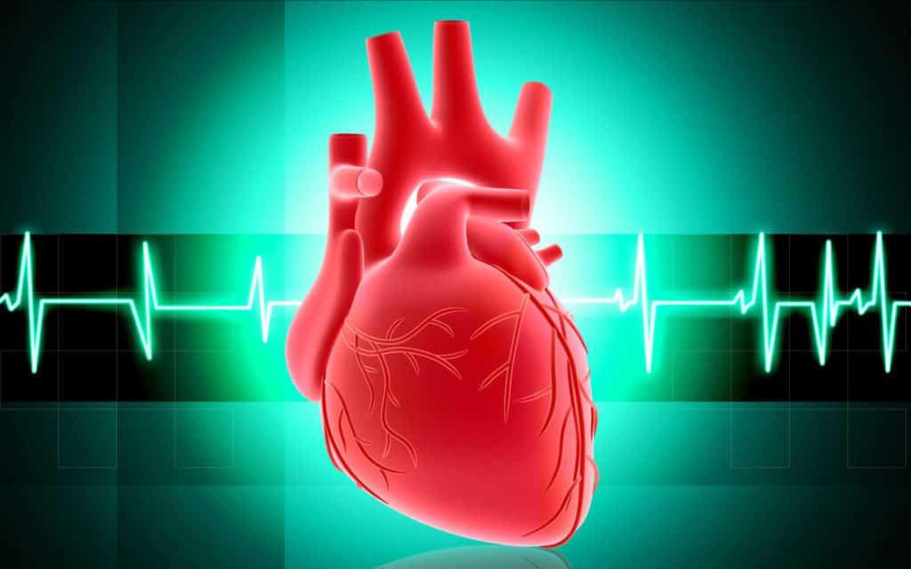 Bagaimana anatomi dan cara kerja (fisiologi) Jantung ...