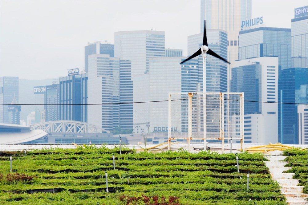urgensi pertanian perkotaan