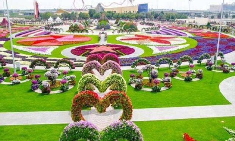 wisata bunga