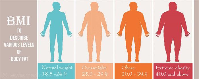 Kategori obesitas