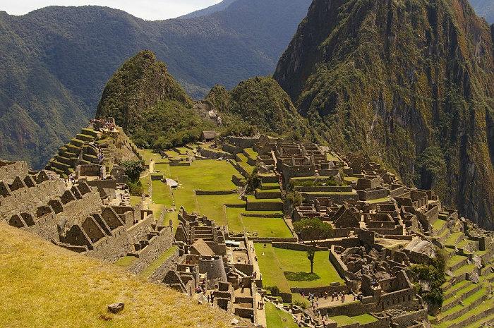 Urban Farming suku Inca 3
