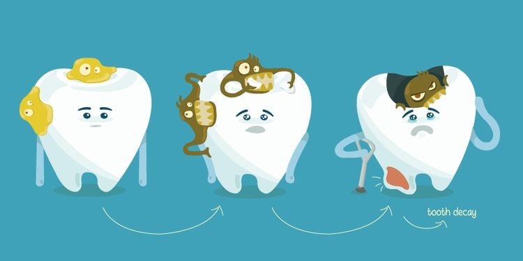 Bakteri mulut