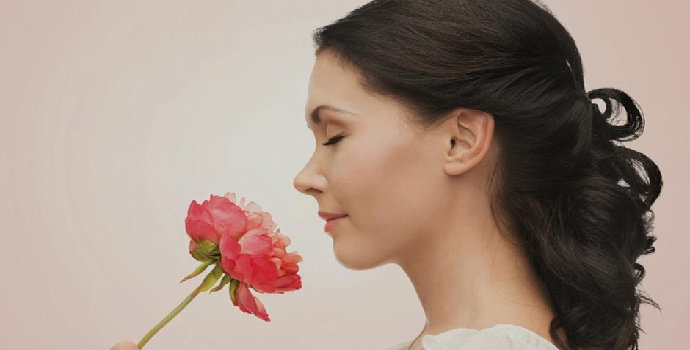 bunga wangi