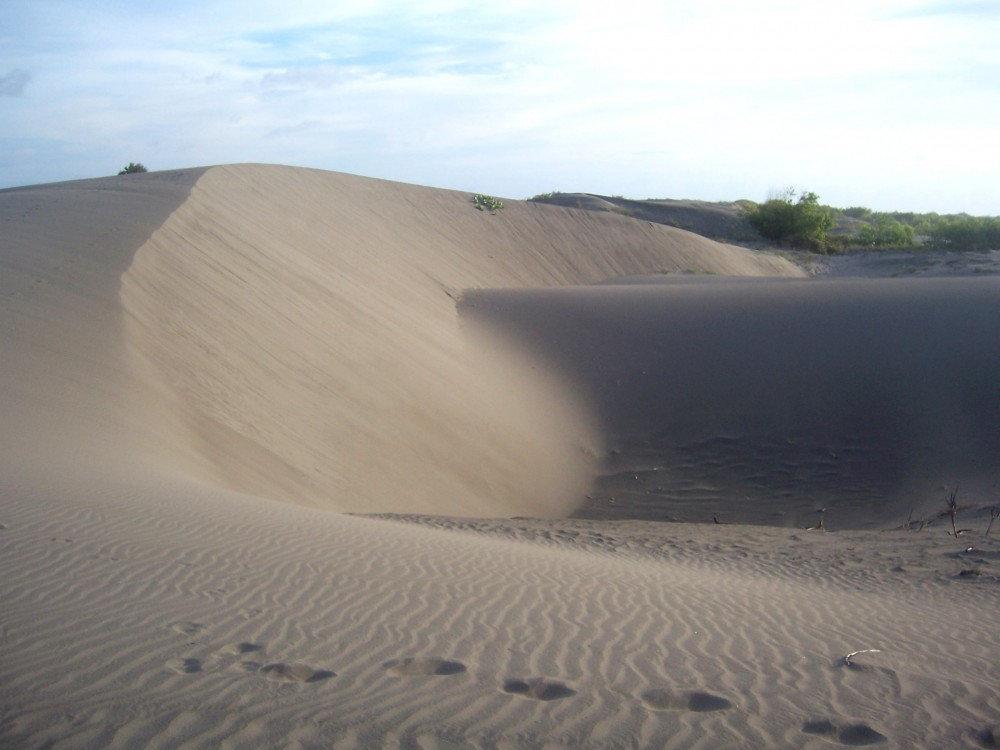 Apa Yang Dimaksud Dengan Dune Atu Bukit Pasir Ilmu Pariwisata Dictio Community