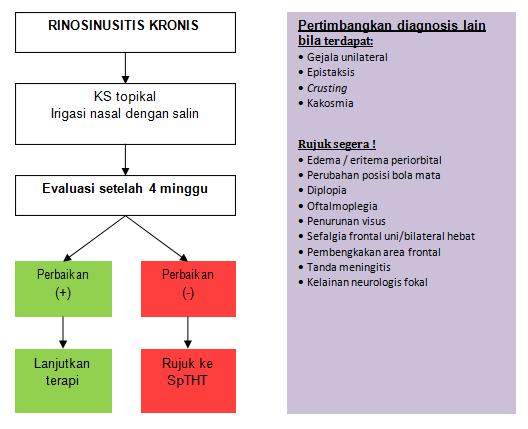 Algoritma Tatalaksana Rinosinusitis Kronis (RSK)