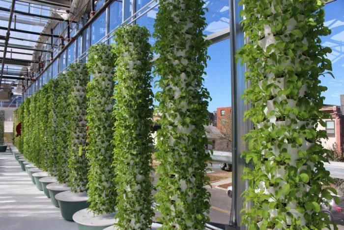 Vertical Garden Aeroponik 3