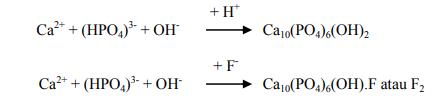 Reaksi kimia dari proses remineralisasi pada permukaan gigi.